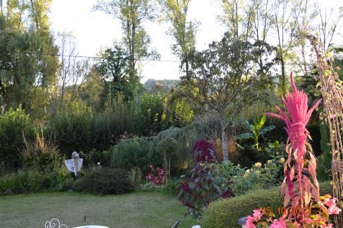 citrouilles,jardin,Combarel 015.JPG