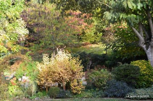 Jardin à l'automne 037.JPG