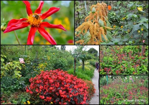 2016-09-13 bouquet,jardin de Monet,les vaches,Pourville sur mer10.jpg