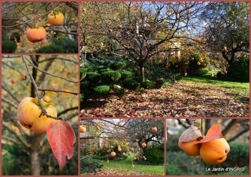 2015-11-05 Romefort,bord de Creuse,vent,feuilles,jardin,canal2.jpg