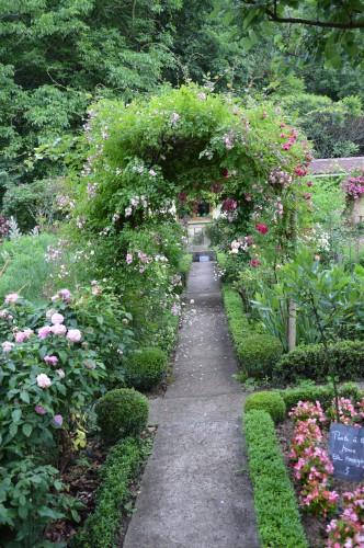 jardin,potager,roses,sauges 006.JPG