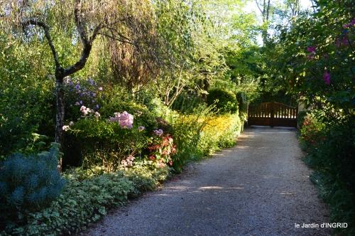 jardin,arrosage,pourpre,bouquet 051.JPG