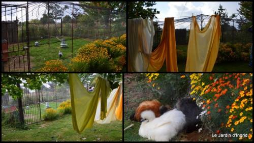 2014-09-24 jardin de Marie,éoliennes,Ciron,Angles,Fontgombault1.jpg