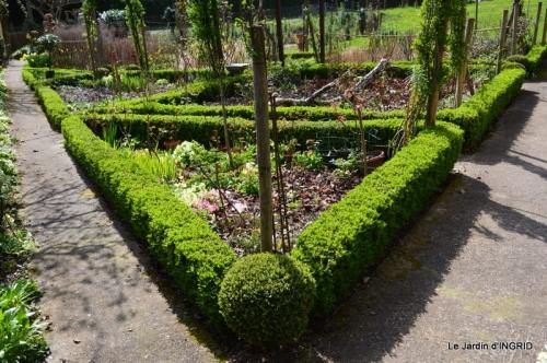 jardin (3 semaine de mars) 011.JPG