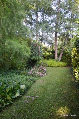 en juin jardin 166.JPG