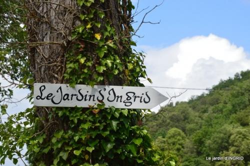 jardin pluie,Inès,Bébés cygnes,bouquet,canal 066.JPG