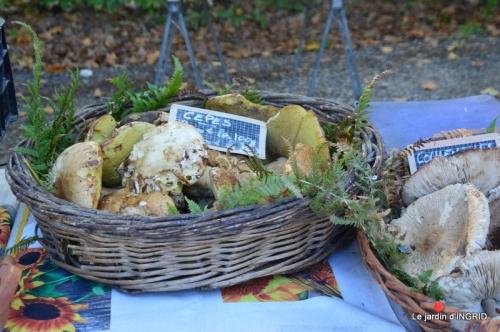 Issigeac,citrouilles ,rhus,automne,jardin 024.JPG