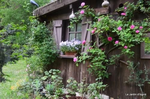 jardin avril et mai, 036.JPG