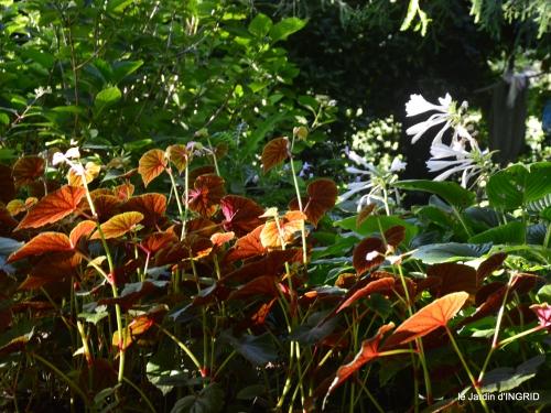 jardin,papillons,anniversaire d'Ines,bricolage 203.JPG