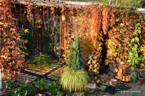 canal,automne,tonte des feuilles 052.JPG