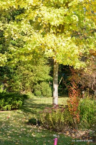 jardin automne,Arya avec Nicky 104.JPG