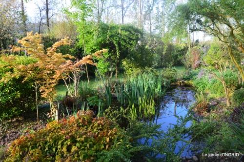 les dentelles,jardin avril 106.JPG