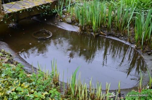 semis,bassin,tour du jardin 043.JPG