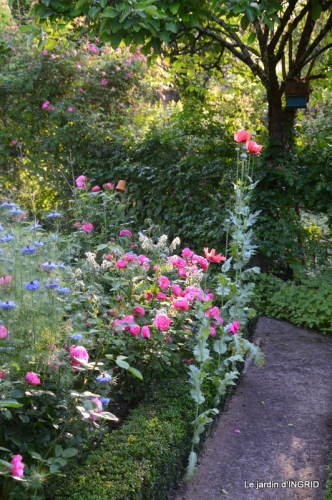 Trémolat,petit jardin,Julie 070.JPG