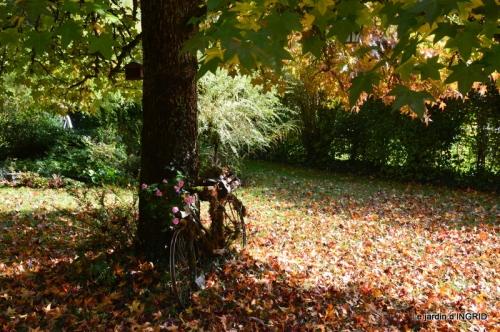 citrouille fleurie,décos jardin,automne 060.JPG
