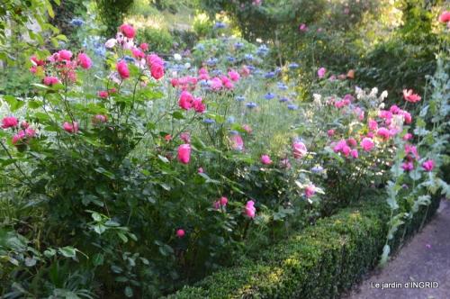 Trémolat,petit jardin,Julie 071.JPG