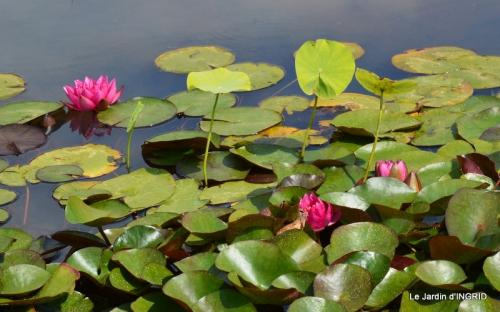 les jardins d'eau de Carsac 012.JPG
