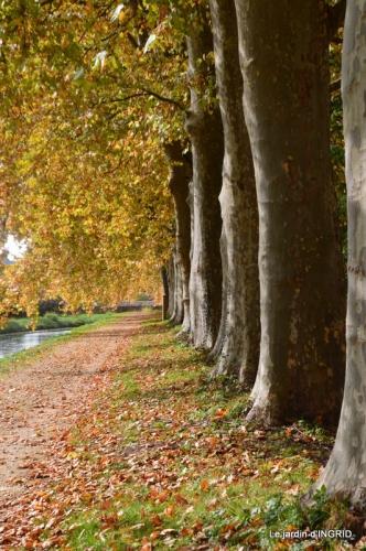 canal automne ,jardin,Ines 106.JPG