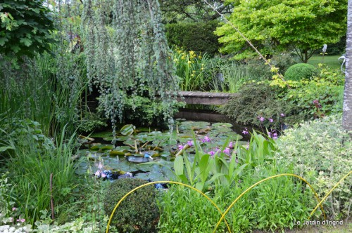 canal,fleurs blanches,marguerites,LE FLEIX,osier 214.JPG