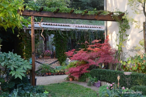 canal automne ,jardin,Ines 052.JPG