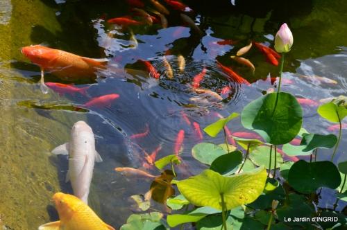 les jardins d'eau de Carsac 184.JPG