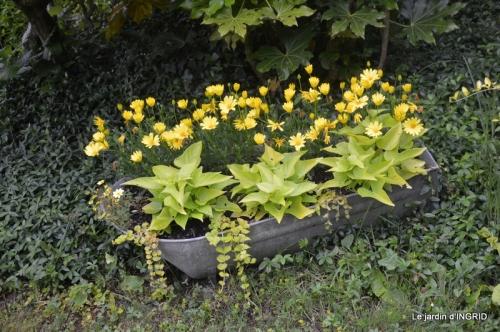 jardin en mai,visites bus,petit jardin 229.jpg