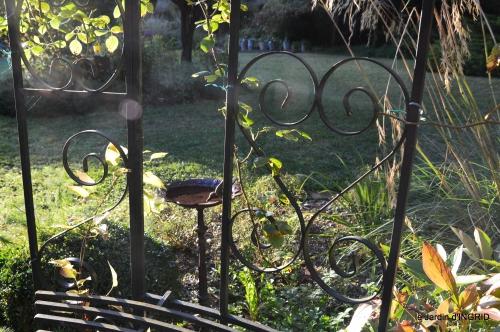 cygnes,jardin,apres la tonte 094.JPG