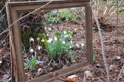 chez Maryse,pour tableaux,jardin 2013 036.JPG