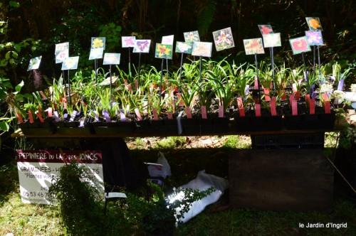 mariage,jardin,la Brande,figues 126.JPG