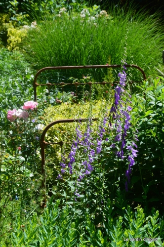 en juin jardin 005.JPG