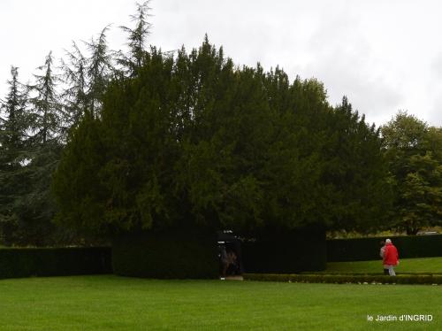 jardin pluie,chateau Losse 122.jpg