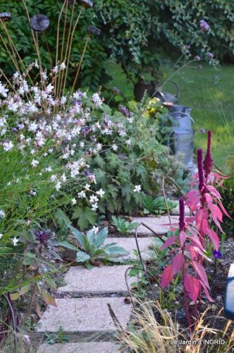 jardin ,bouquet 009.JPG