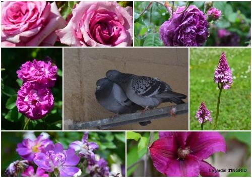 2017-05-12 jardin,st Astier,colline3.jpg