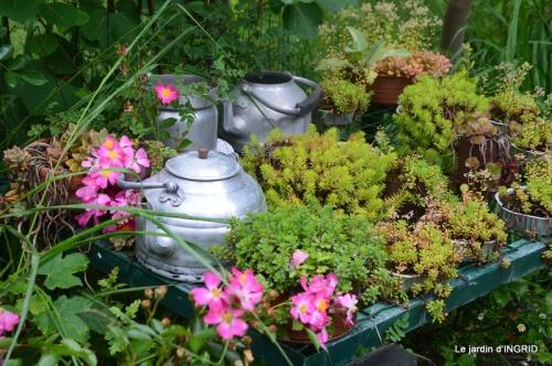 hémérocalles,Doprdogne,canal,bouquet fruit,jardin 043.JPG