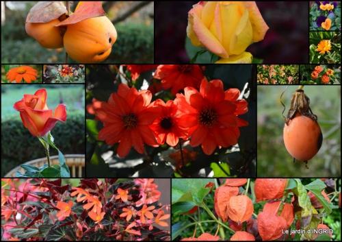 2015-09-06 dahlias,massifs refaits,Lalinde,jardin3.jpg