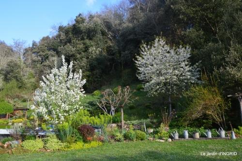 les dentelles,jardin avril 107.JPG