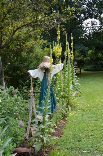 chez Fabien,le canal,jardin,hémérocalles,le souci,potager 059.JPG