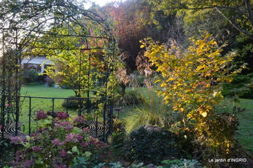 Jardin à l'automne 147.JPG