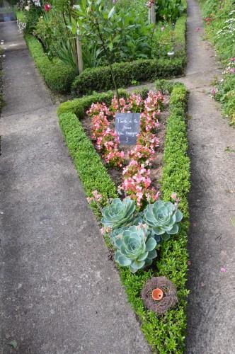 jardin,potager,roses,sauges 119.JPG