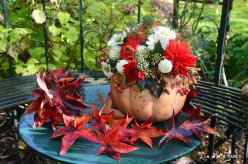 citrouille fleurie,décos jardin,automne 085.JPG