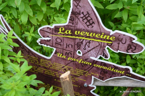 pigeons,Conives,Belves filature,jardin Limeuil 182.JPG