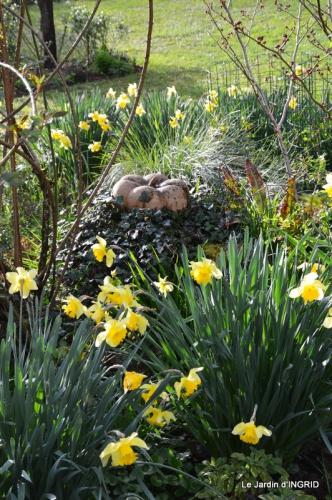 les filles,les patons,jonquilles,jardin 081.JPG