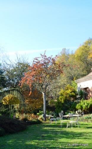 jardin automne ,petits roses 093.JPG