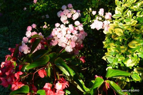 insectes,fleurs,land art,Couze,chateau de Banes,Lalinde,Monsac 241.JPG