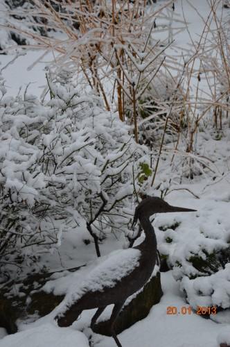 chat roi,neige 20.01,annivers.ARYA,casse 053.JPG