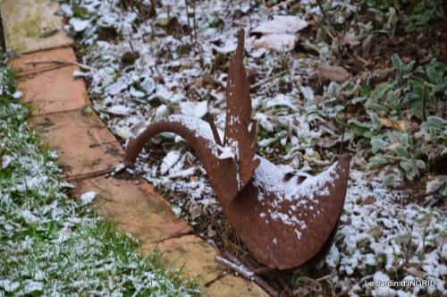 oiseaux première neige 035.JPG