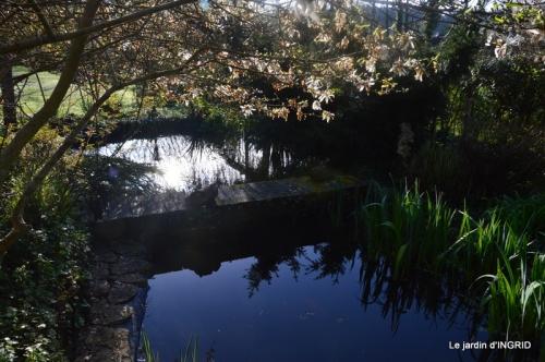 plans d'eau,jardin 020.JPG
