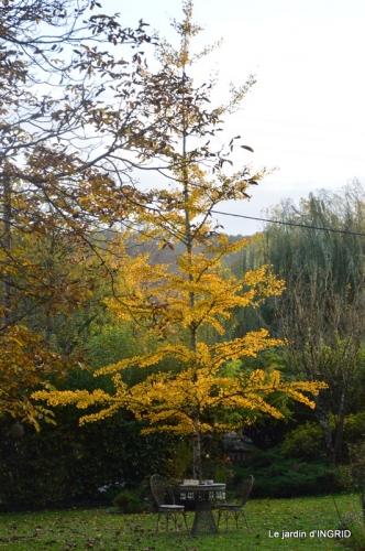 canal automne ,jardin,Ines 032.JPG