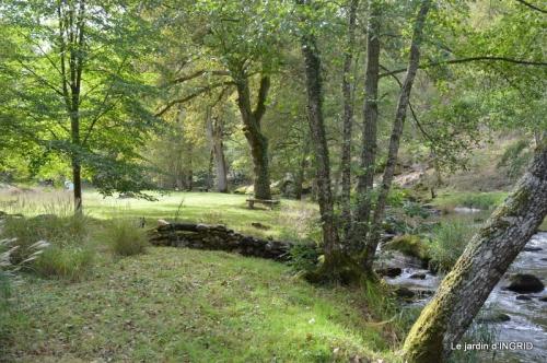 la Sedelle,étang de Riault,cyclamens 064.jpg