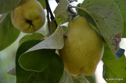jardin,fruits,Caro,papillons,manthe religieuse,Lalinde 063.JPG